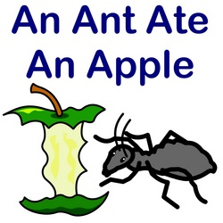 An Ant Ate